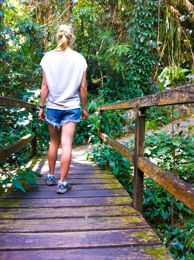 Kuranda-walk-trail